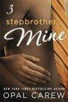 Stepbrother, Mine - Part 3