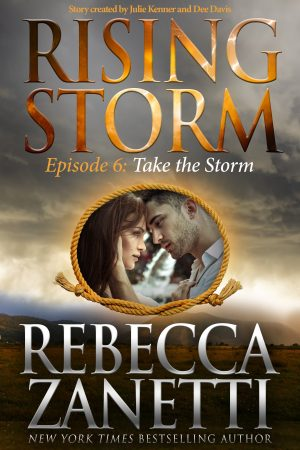Take the Storm - Print Cover