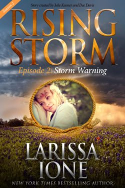 Storm Warning - Print Cover