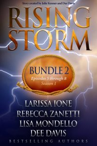 Rising Storm: Bundle 2 - Print Cover