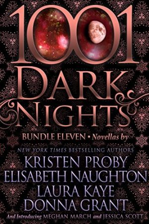 1001 Dark Nights: Bundle Eleven - Digital Cover